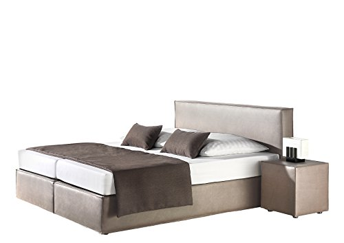 Maintal Boxspringbett Carva