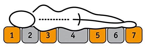 Sleepdream Härtegrad 2, 7-Zonen-Tonnentaschenfederkern-Matratze, Polyester-Viskose, weiss, 200 x 90 x 18 cm