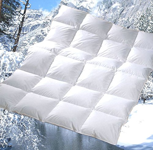 Revital extra-warme Winter Daunendecke Bettdecke 155x220 cm 1360g 90% DAUNEN, Wärmeklasse 4, 4x6 Kassetten (155x220 cm)
