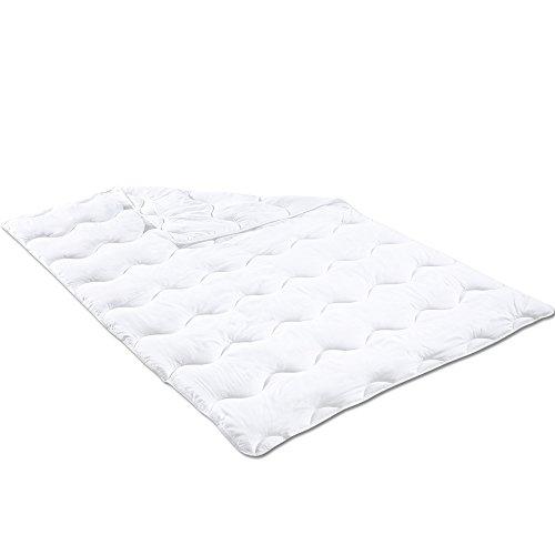 PROHEIM Ganzjahres Bettdecke 135 x 200 cm Atmungsaktive Steppdecke für Allergiker Geeignet Steppbett für Winter und Sommer Oberbett Maschinenwaschbar und trocknergeeignet