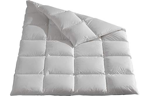 Revital Daunendecke Bettdecke 155 220 cm, 100% canad. Daunen, mittelwarme Ganzjahresdecke Wärmeklasse-3, 4x6 Kassetten, 4cm hohe Innenstege, gefüllt mit 1100g, (155x220)