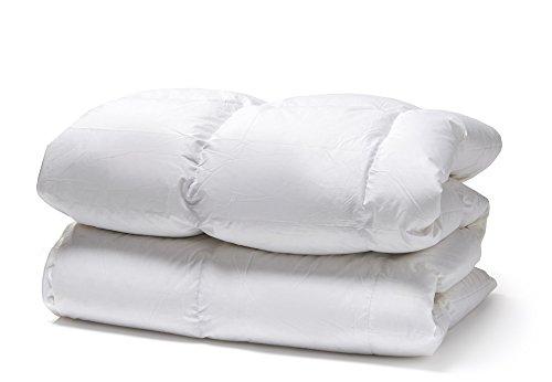 White Cloudz - Bettdecke Graz Daunendecke Frühjahr/Herbst 200x220 cm - 90% Europäische Daunen, Klasse 1 - antiallergisch für Allergiker Steppbett/Steppbettdecke / Einziehdecke, Waschbar 60°